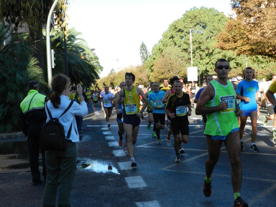 media valencia 2012 1