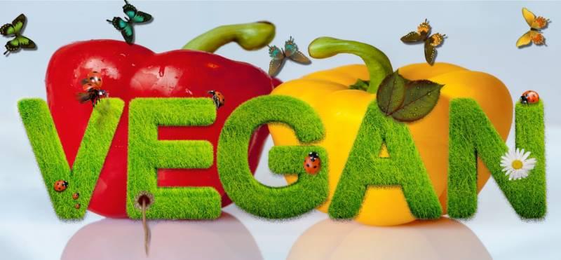 vegan-guia
